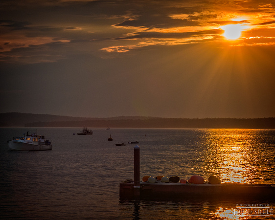 Bar Harbor Sunrise 5